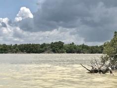 Rio Lagartos, Yucatán.México